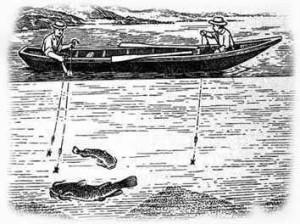 Ловить сома на квок